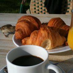 El croissant, francés. Sin duda