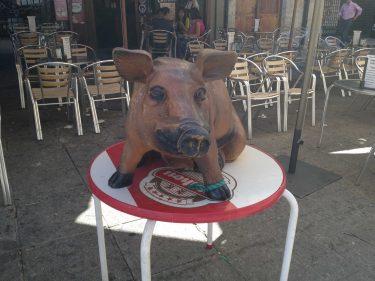 Mamífero artiodáctilo frente a la Cafetería Castilla, en Ciudad Rodrigo (foto: Igor Cubillo)