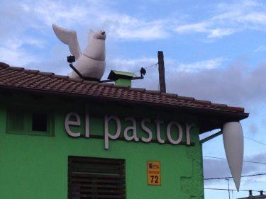 Pedazo paloma en el tejado de El Pastor del Gorbea (foto: Igor Cubillo)