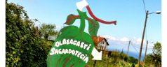 Bienvenidos a Olasagasti Sagardotegia (Donostia)