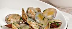 Lecturas: 'Recetario marino. Pescados y mariscos'