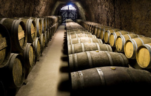 Bodega de la Ruta del Vino de Rueda.