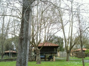 Mis vistas en La Salgar (foto: Cuchillo)