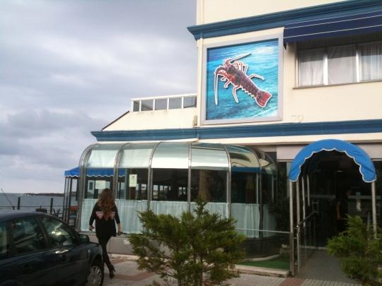 Hasta la fachada del hotel trepan las langostas en Astuy (foto: Cuchillo)