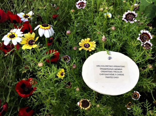 Detalle del jardín de Mugaritz (foto: Cuchillo)