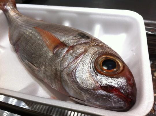El antes de un besugo en Marisquería Ipar Itsaso (foto: Cuchillo)