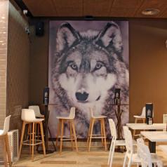 Lobo (Donostia). El precio de la moda
