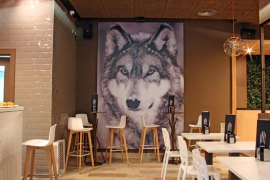 El lobo del Lobo (foto: www.lobodonosti.com)