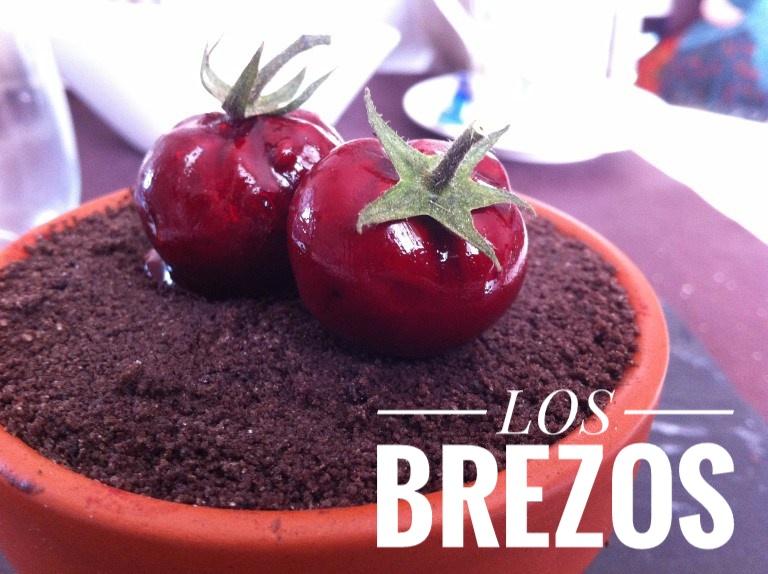Los Brezos (San Mamés de Meruelo). Efectismo de alta cocina a precio de tapa