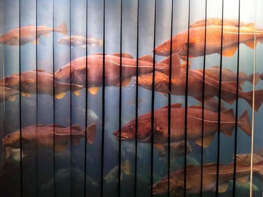 Ahí detrás hay una sala de proyecciones, en el Museo Naval (foto: Cuchillo)