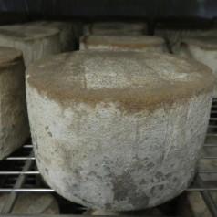 La quesería Kerixara y la rehabilitación de la colza
