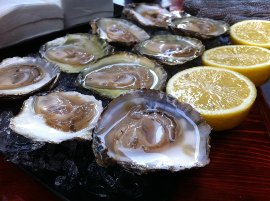 Unas buenas ostras holandesas en la terraza de la taberna Saltsagorri (foto: Cuchillo)