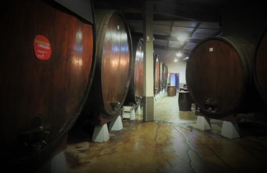 Las kupelas se alinean en el interior de Zelaia Sagardotegia (foto: Cuchillo)