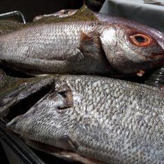 Mugarra (Bilbao). El mejor pescado de la villa, sin parrilla
