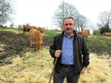 José Manuel Suárez cuida personalmente de sus bueyes (foto: Cuchillo)