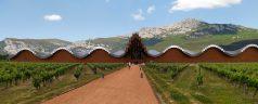 Esférica, el festival que unirá vino, música, gastronomía y territorio en Rioja Alavesa